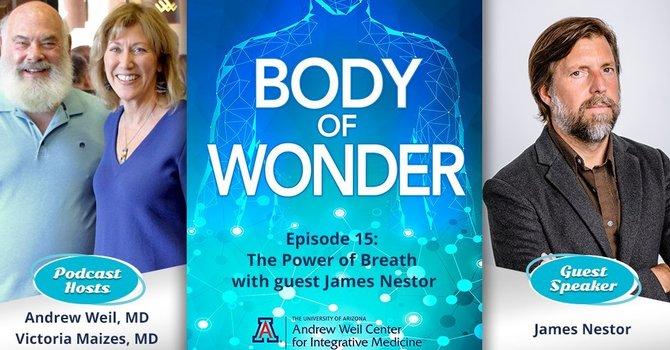 Body of Wonder Podcast  image